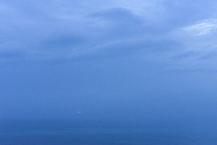 seafog Blue Backgrounds Textured  No People Sky Outdoors Nature Travel Dailylife Nikon EyeEm Korea Weather Cloudscape Dramatic Sky EyeEm Best Shots Seafog Sea Fog Sea Fog Water Nature Scenics EyeEm Selects The Week On EyeEm