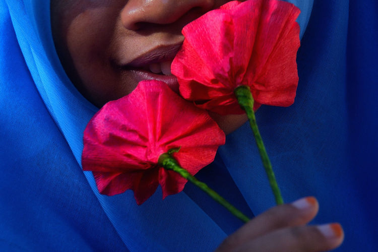 Close-up of hand holding red flower