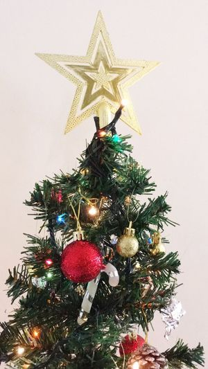 Christmas Momeng Christmas Tree christmas tree Holiday Decoration Christmas Decoration Christmas Ornament Holiday - Event Celebration Plant Religion Architecture Tree Topper Christmas Lights Low Angle View Built Structure Outdoors No People Belief