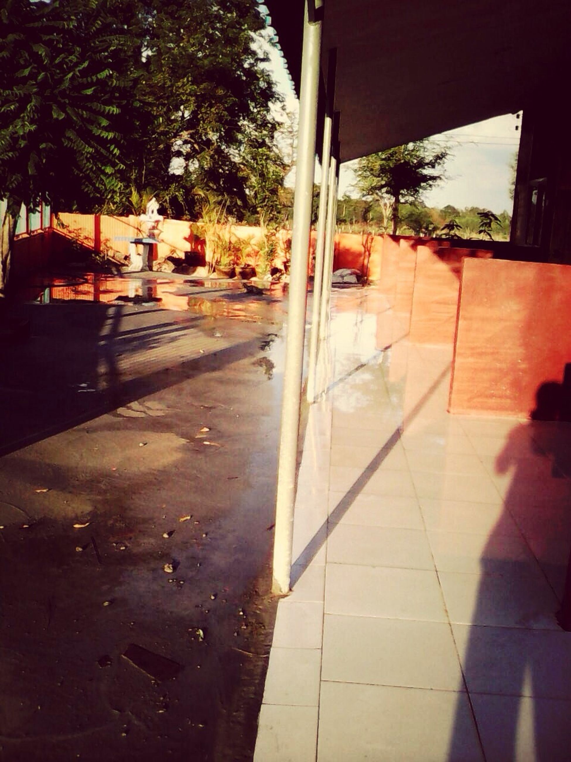 tree, shadow, sunlight, street, built structure, sidewalk, architecture, water, building exterior, footpath, day, incidental people, empty, road, outdoors, reflection, no people, absence, beach, city