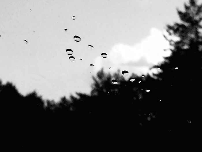 Raindrops Scattered Few Blackandwhite Black And White Trees Treetops Sky Clouds And Sky Nature Check This Out Relaxing Eyeemphoto