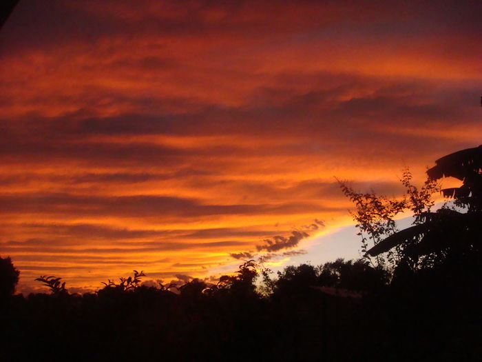 red skies - my mother took this amazing pic the other evening Skies RedSky Clouds And Sky Sky_collection Cloud_collection  Clouds Sunset