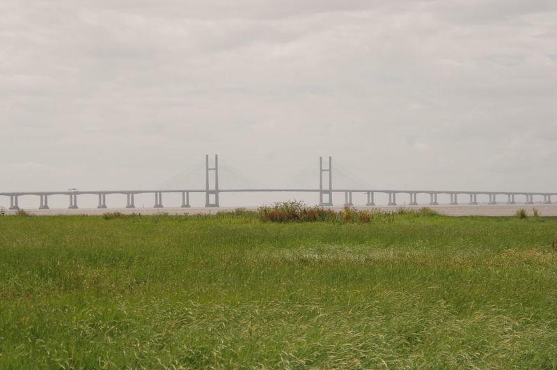New Severn Crossing Bridge Architecture Grass For Ground Transportation Landscape