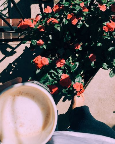 Coffee Good Morning Flowers Check This Out Enjoying Life