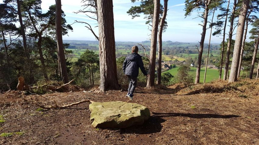 Full Length Hiking Walking One Person Rear View Tree Leisure Activity Tree Trunk Outdoors Lifestyles People Nature Playing One Boy Only Rock - Object Jumping Viewpoint View From The Top WoodLand Day Photographer