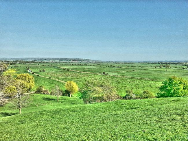 Somerset Levels Uk In All Its Glory Nature On Your Doorstep Lush Green Fields Summer Memories Relaxing Taking Photos