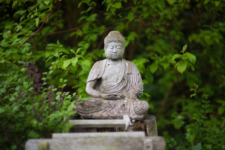 Finding inner peace Buddha Faith Nature Beauty In Nature Buddha Statue Greenery Human Representation Idol Inner Peace Monk  Nature No People Outdoors Peaceful Religion Sculpture Tree