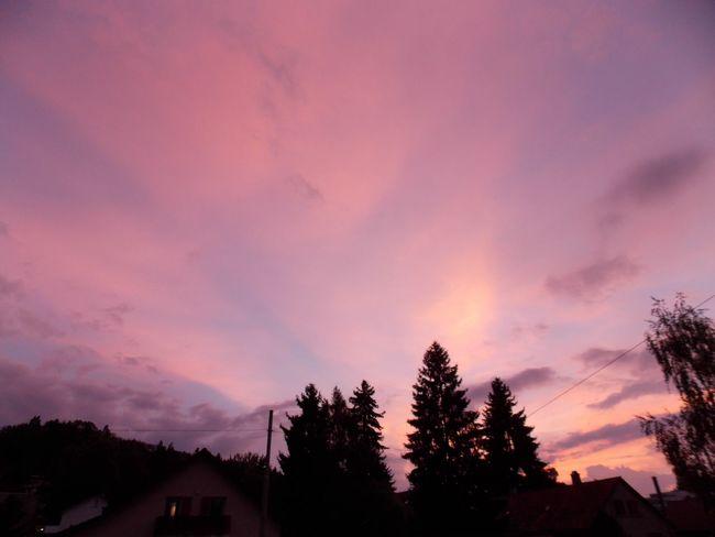 Sunsets Naturelover Pink Skys Evening Sky