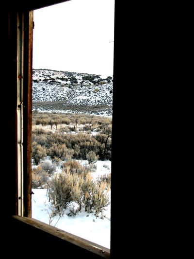 Showcase: January Abandoned Places Snow Covered Secluded  Winter Landscape It's Cold Outside My Winter Favorites United States Eye4photography