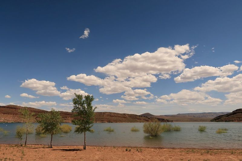 Landscape of a reservoir with trees, sand, colored hills in Utah Clouds And Sky Utah Utah Scenery Sky Cloud - Sky Water Plant Tree Scenics - Nature Nature Environment Outdoors Lake Blue Growth Arid Climate Tranquility Landscape Tranquil Scene Land No People Day Beauty In Nature