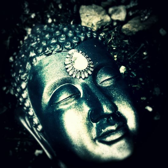 EyeEm Vision Statueporn Buddah Head In The Garden Blue Face Gem