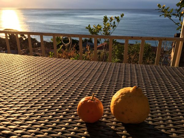 Lemon and tangerine Yellow EyeEmNewHere Morning Tangerine Lemon Sea Food And Drink No People Food Healthy Eating Food Stories Horizon Over Water Outdoors Day Fruit Nature Freshness Sky
