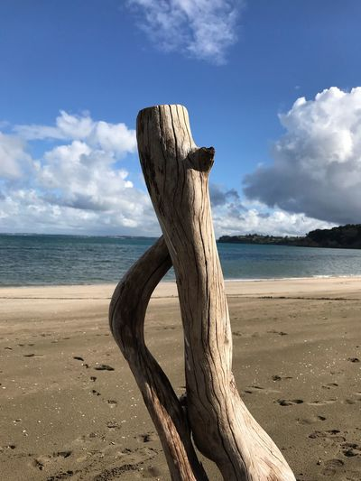 Driftwood on wooden post on beach against sky