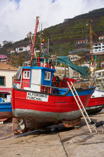 Beautiful red fishing boat Alfonsinho in Câmara de Lobos, Madeira Madeira Portugal Portuguese Red Red Boat Transport Transportation Travel Architecture Beach Boat Fish Fisherman Fishermen Fishing Fishing Boat Harbor Island Nature Outdoors Sail Sailboat Sailing Sea Transportation