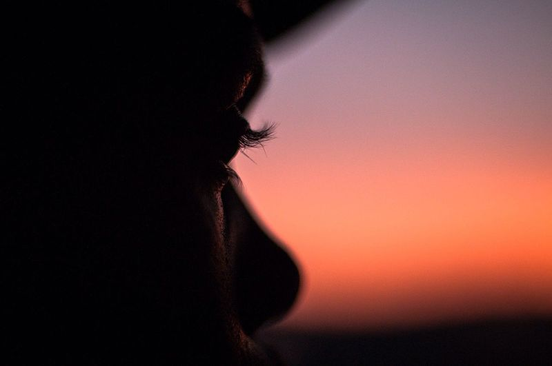 Close-up of silhouette person against sky during sunset