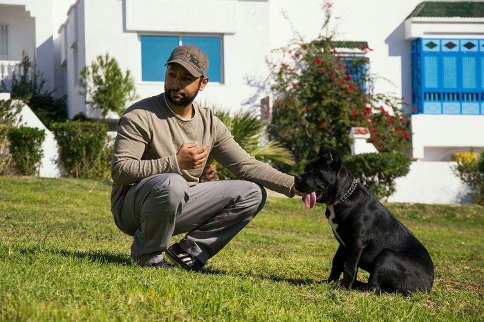 Animal_collection Dog Canecorso  Animal Photography Eyeem Tunisia Dogs Doglover Cane Corso Eye4photography