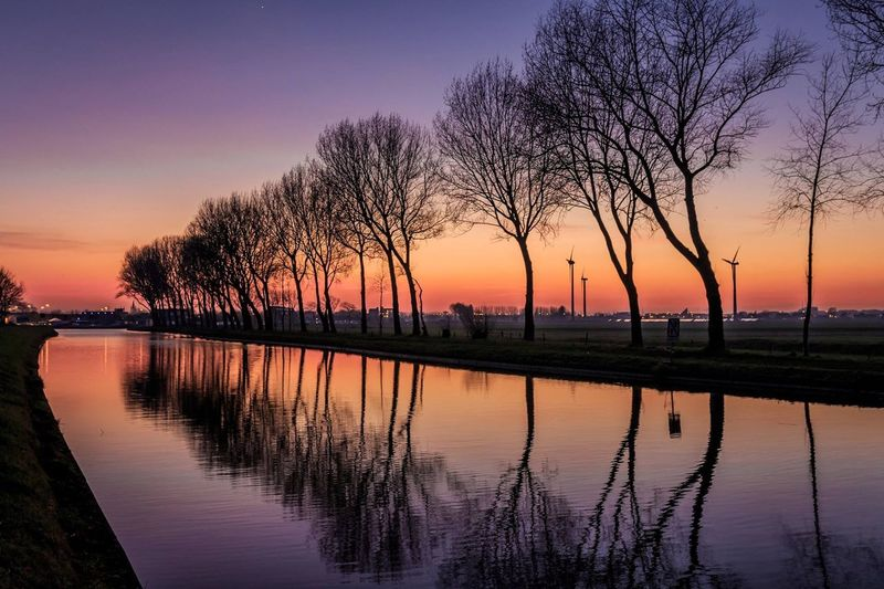 Reflection on bare trees against sky at sunset