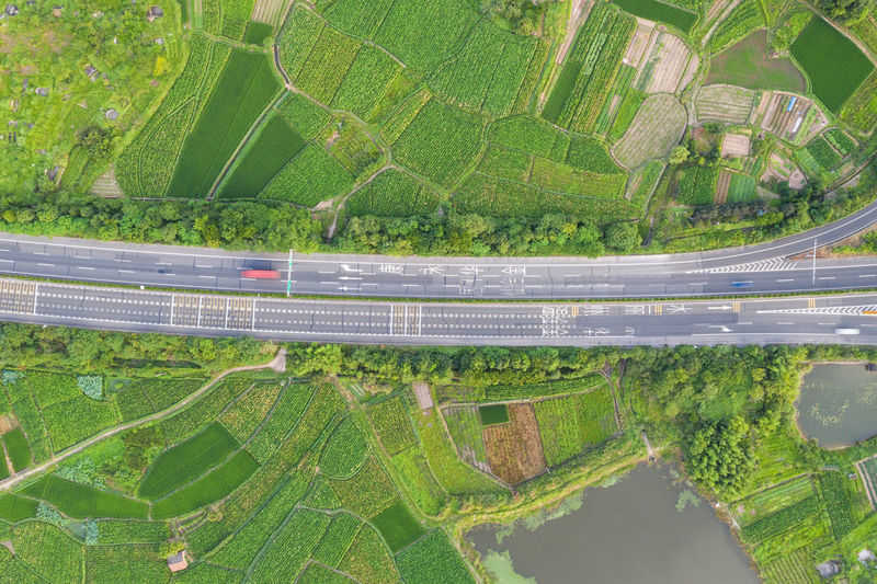 Aerial view of road by plants