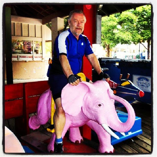 Democrat on a Republican Republican Democrat Elephant PinkElephant carnival arcade