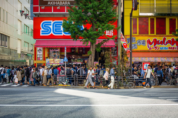 Akihabara City Crowd Group Of People Large Group Of People Street Architecture Building Exterior Built Structure Real People Road Transportation City Life Men Road Marking City Street Sign Day Women Marking Outdoors Akihabara Tokyo Japan Japan Photography Colorful Colourful Sega Streetphotography Urban City City Life City Street Canon Canonphotography Tree The Street Photographer - 2019 EyeEm Awards The Traveler - 2019 EyeEm Awards Road EyeEm Best Shots EyeEmNewHere