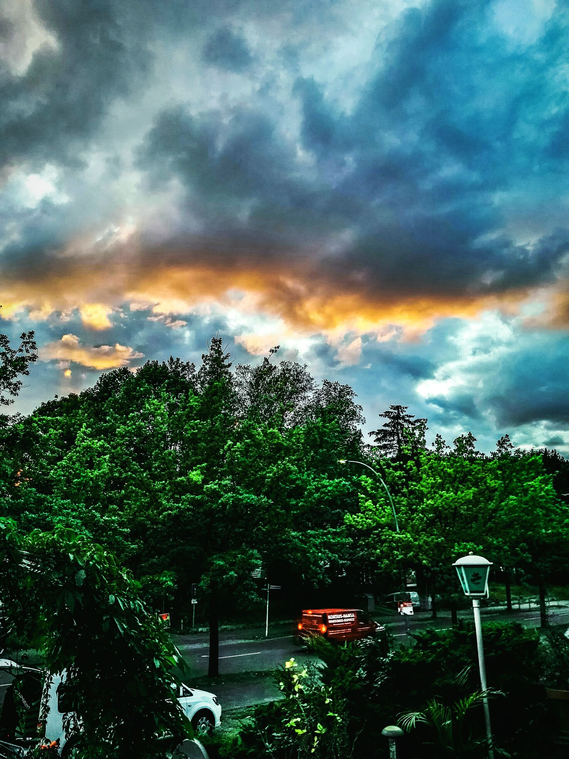 tree, cloud - sky, sky, beauty in nature, no people, nature, outdoors, tranquility, scenics, growth, sunset, multi colored, day