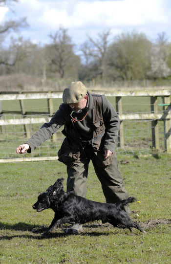 The send away.... Cocker Spaniel  Country Life Dog In Action Dog Training Full Length Gundog Leisure Activity Lifestyles Man And Dog