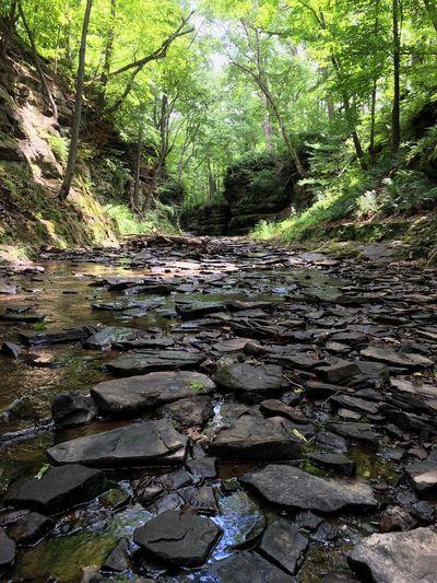 Wisconsin Baraboo Pewits Nest Waterfall Water Rocks