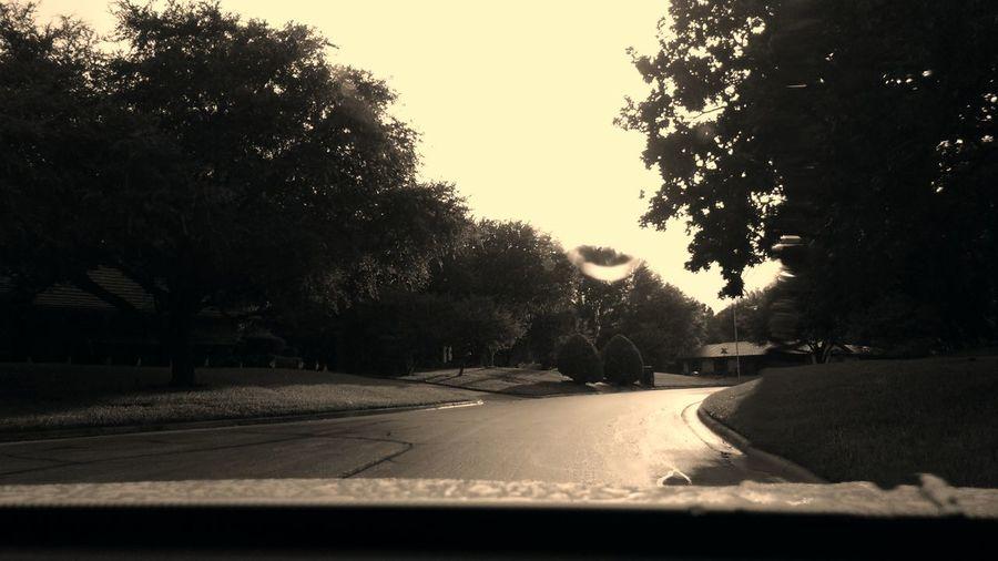 Tree Transportation Road Car Street No People Outdoors Sky Nature Day The Way Forward Azle Rainy Days RainDrop Texas