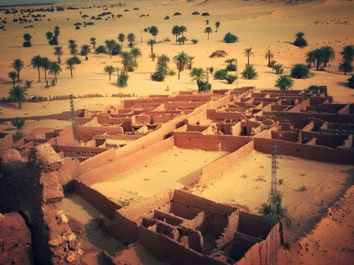 Architecture Old Architecture Old Palace Old City Of Desert Architecture_collection Architecturelovers Old Plane Palm Trees