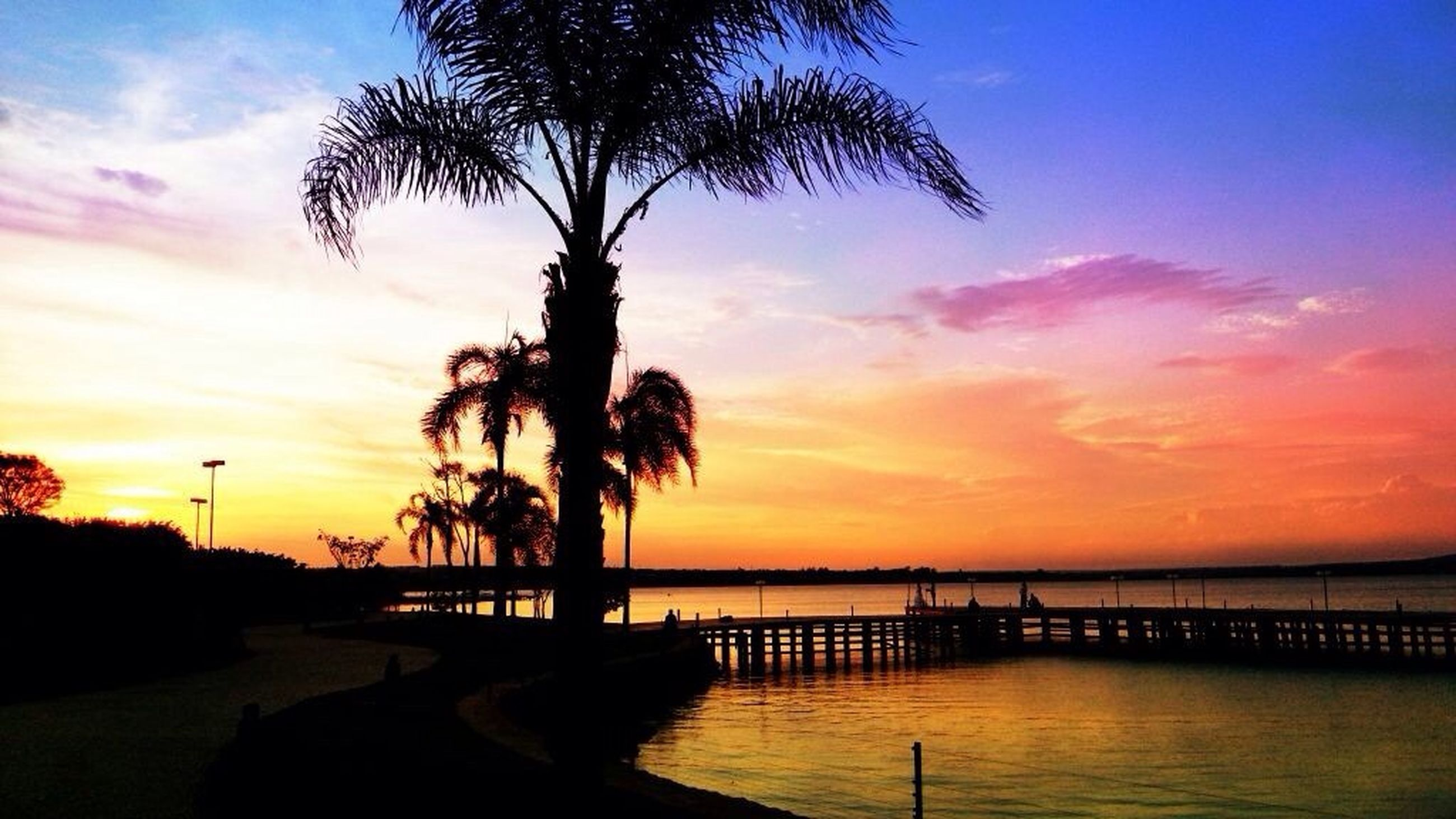 sunset, silhouette, scenics, tranquil scene, water, tranquility, beauty in nature, sky, tree, orange color, palm tree, sea, nature, idyllic, cloud - sky, dramatic sky, horizon over water, majestic, cloud, tree trunk
