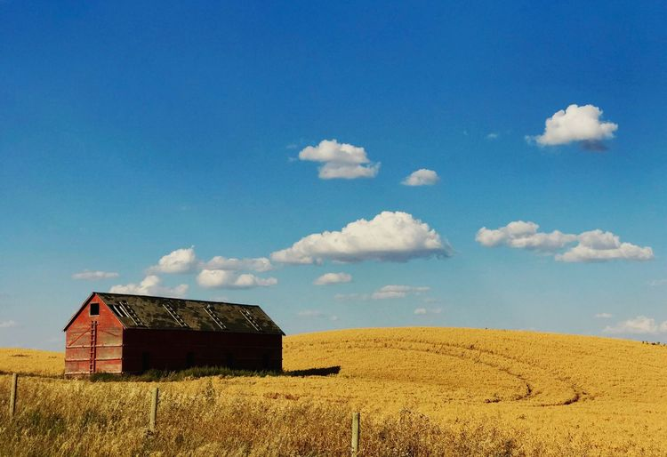 Built Structure Sky Landscape Field Architecture Agriculture No People Day Cloud - Sky Outdoors Building Exterior Barn Tranquility Scenics Nature Beauty In Nature Abandoned Buildings IPhone 7 Plus IPhoneography