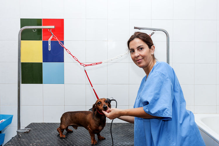 Female Veterinarian Examining Dog In Animal Hospital