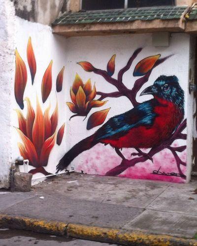 Genial :) los pensamientos son como las aves un momento están, y en otro simplemente se esfuman Lírica Fresca escribo a una lengua muerta llamada amor.