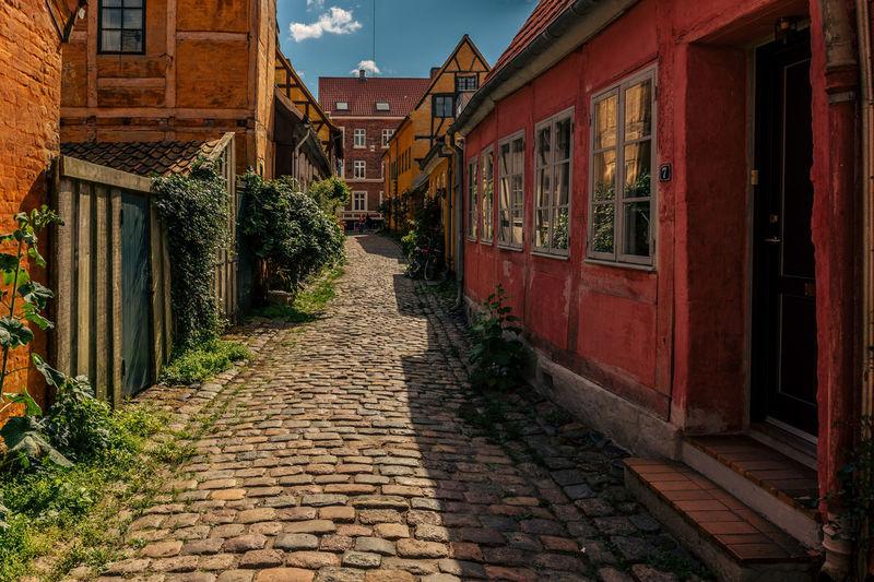Walkway amidst houses in town