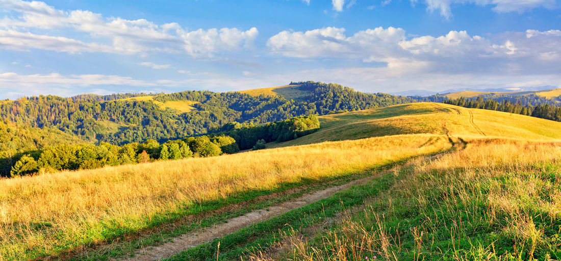 The beautiful panoramic landscape of the carpathians in the daytime