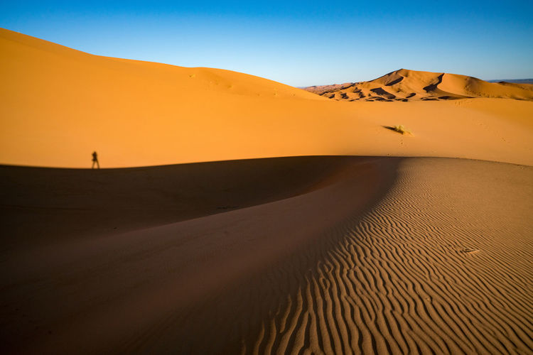 Lonely photographer ii sahara desert
