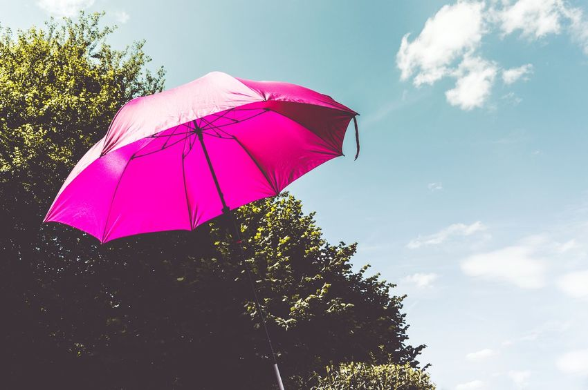 UMBRELLA UMBRELLA| Protection Low Angle View Cloud - Sky Tree Summer Outdoors Pink Color Sky Day No People Nature Beauty Umbrella Life EyeEmBestPics Freshness EyeEm Gallery EyeEm Best Edits EyeEm Best Shots Fresh On Eyeem  Sunlight Breathing Space Lifestyles Contrast Contrasting Colors