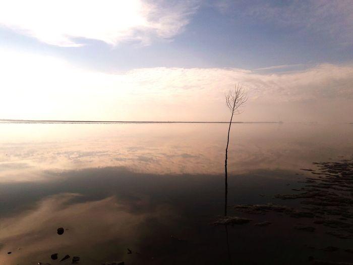 Northsea Water Water Reflections Ebbe Und Flut Nature Weltnaturerbe Wattenmeer