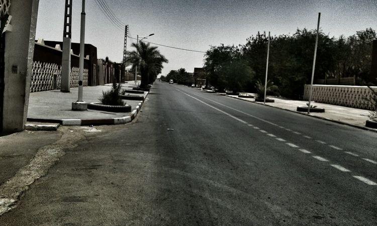 Taking Photos Algeria Adrar Black & White Palmtrees Street Photography