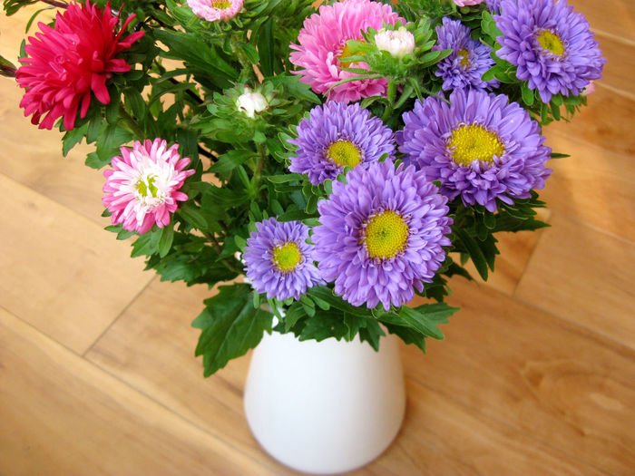 High angle view of flowers in vase on wooden table