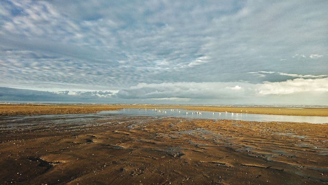 Beach Sea Water Beauty In Nature Nature Horizon Over Water Sky Calvadosnormandie Cloud - Sky On The Road Calvados Autumn Couleurs AMPt_community Couleur Autumn Collection Beauty In Nature Colors Color Nature The Week On EyeEm AMPt_community On