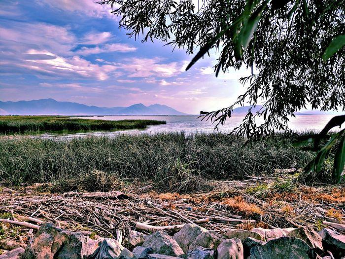 Utah Lake Water Nature Outdoors Sky Scenics Urban Landscape Utah County Utah Beauty UtahisRad Beauty In Nature