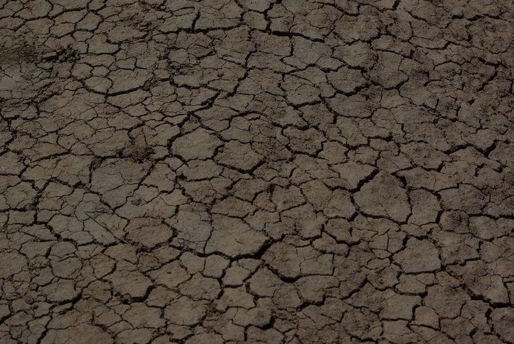 Earth Desert