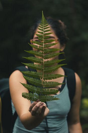 Costa Rica Tree Hoja Lifestyles Photography Portrait Ramdom Tour