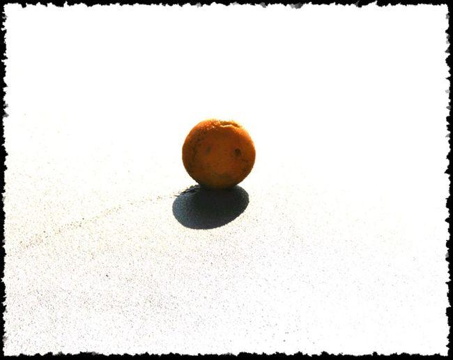 Backgrounds Close-up Food Fruit Ideas Orange - Fruit Orange Ball Orange On The Beach Round Ball Still Life