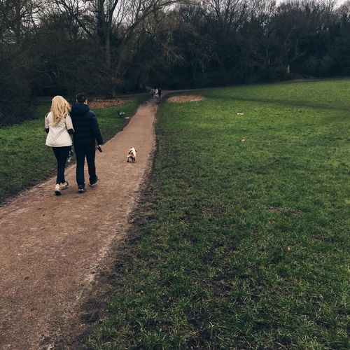 Rear View Of Couple With Dog Walking On Footpath In Park