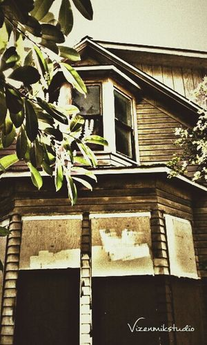 Walking Around Creepy Photography Seattle Old Buildings Outdoors Photograpghy  Queenanne Abondoned Taking Photos Outdoors