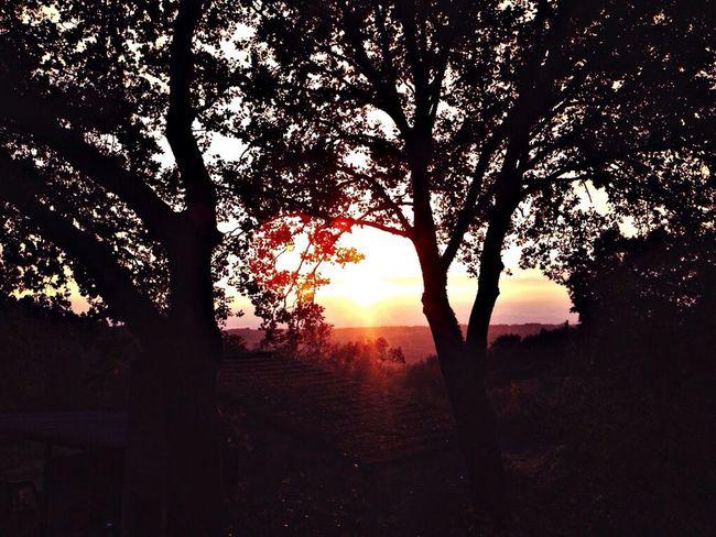 Sunset #sun #clouds #skylovers #sky #nature #beautifulinnature #naturalbeauty #photography #landscape Landscape Italy