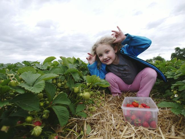 The strawberry fools - MAinLoveWithLife and Little Girl Fooling Around Having Fun Enjoying Life in the Strawberry Strawberry Fields Children Children Photography RePicture Wealth - 31.05.2015