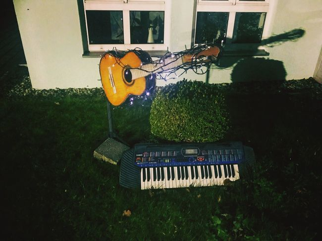 Music Grass Building Exterior Musical Instrument Arts Culture And Entertainment Day No People Built Structure Outdoors Architecture Growth Guitar Nature EyeEmNewHere EyeEm Best Shots Guitars Keyboard Outside